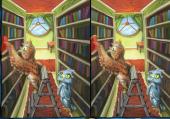 Différences et Puzzles