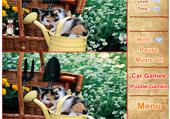 7 différences avec des chatons