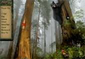 Liste d'objets dans la forêt