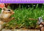 Lettres cachées et animaux rigolos