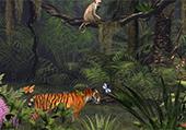 Lettres cachées dans la jungle